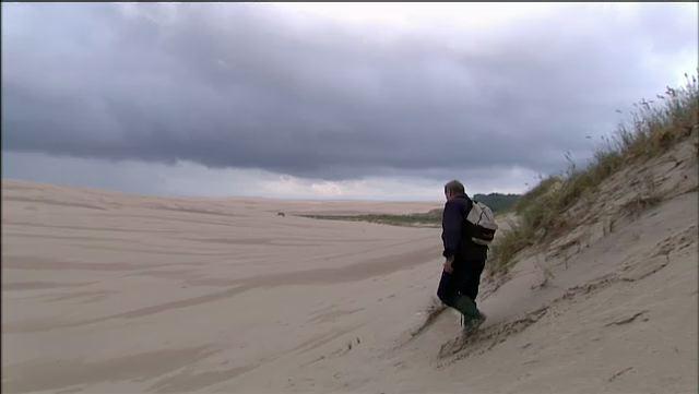Les dunes de la mer Baltique - Pologne