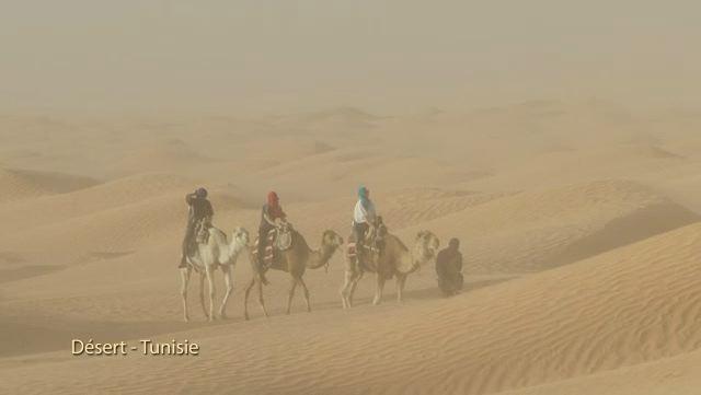 Le désert (Tunisie)