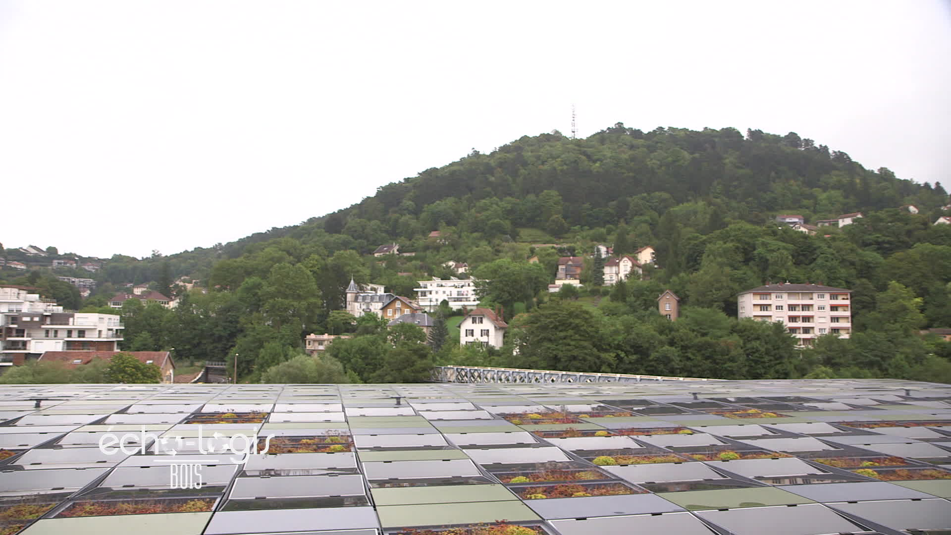 Bois à Besançon - France