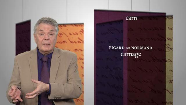 MERCI PROF-EP919-CARNAGE