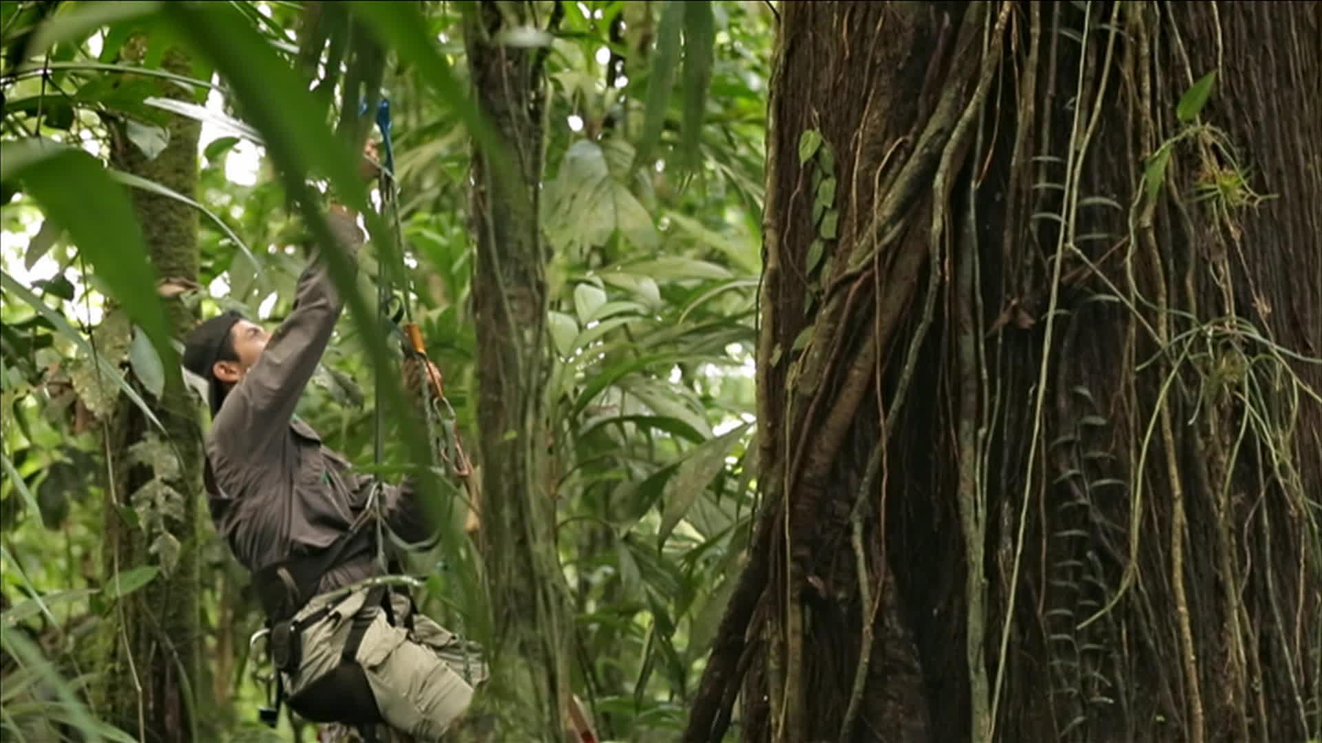A CIEL OUVERT-EP029-COSTA RICA,
