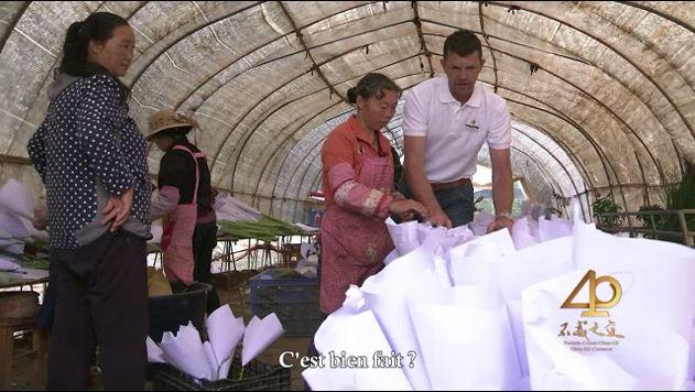 Govert Verdoorn, horticulteur