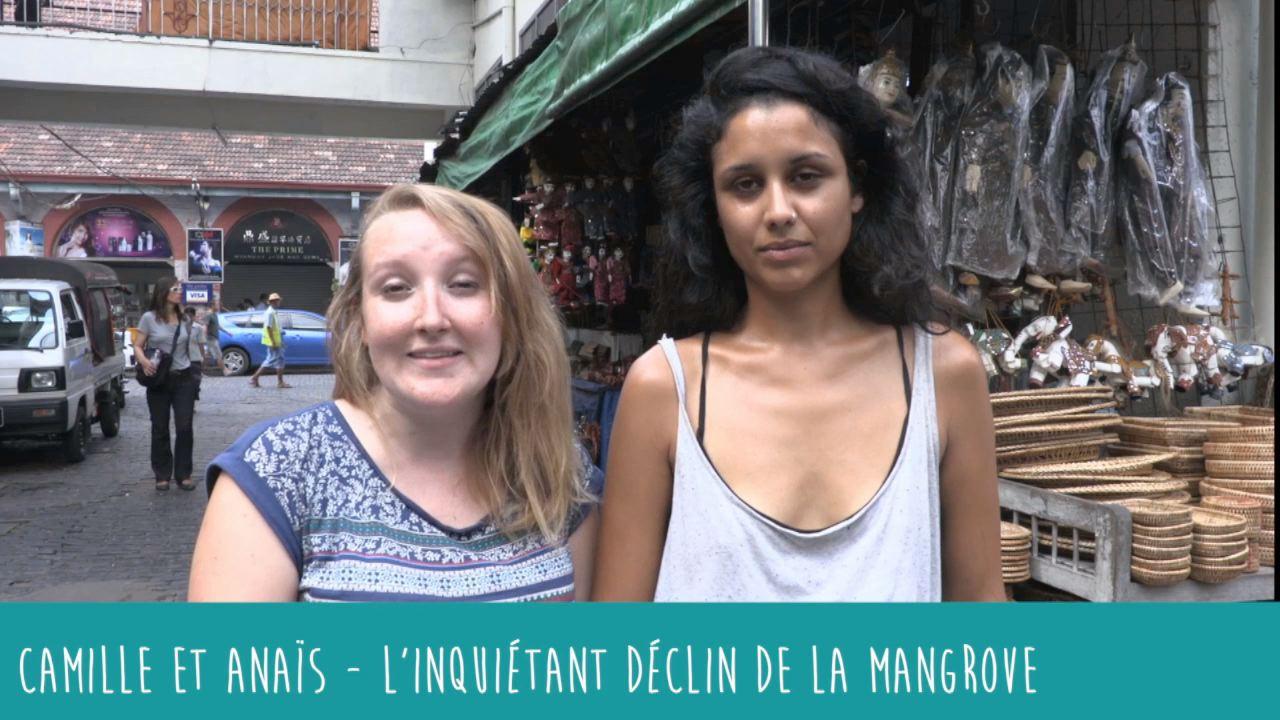 L'inquiétant déclin de la mangrove - Anaïs et Camille en Birmanie