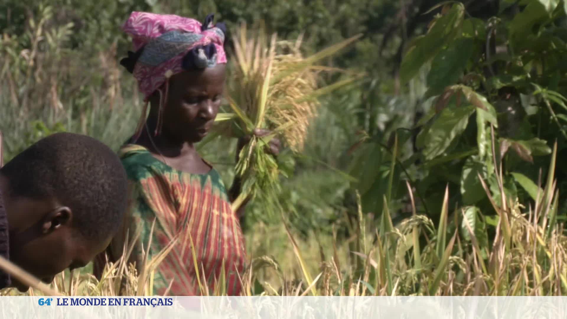 Ouganda : des réfugiés congolais peuvent cultiver eux-même leur terre